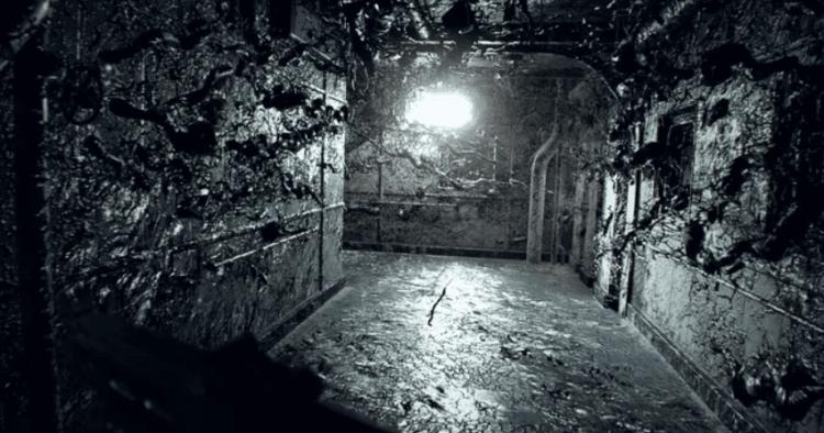 Resident evil VR bundle