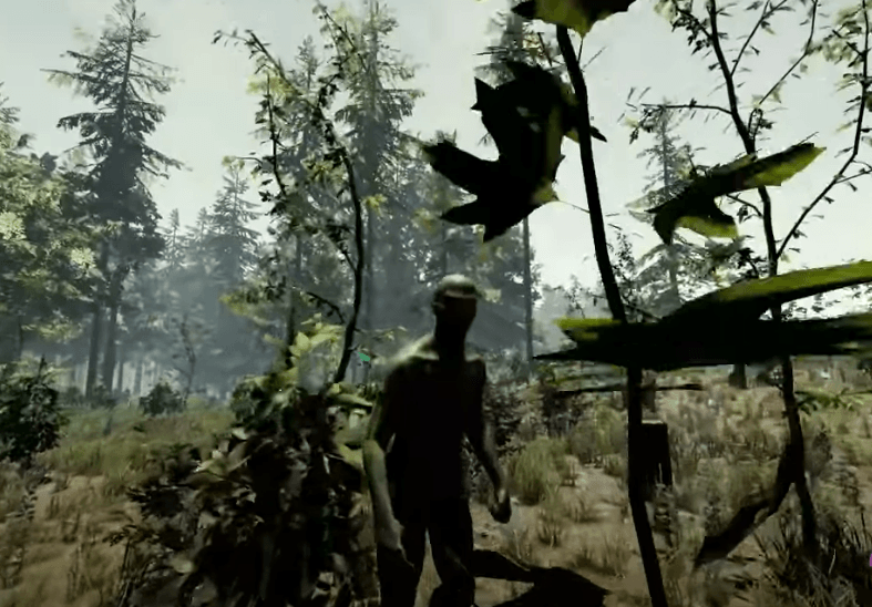 The Forest Steam Gameplay